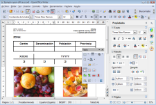 Pantallazo de Apache OpenOffice Writer